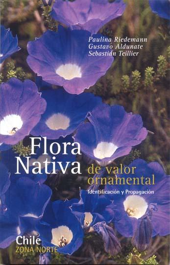 144 planta ornamental y comestible de chile tips de